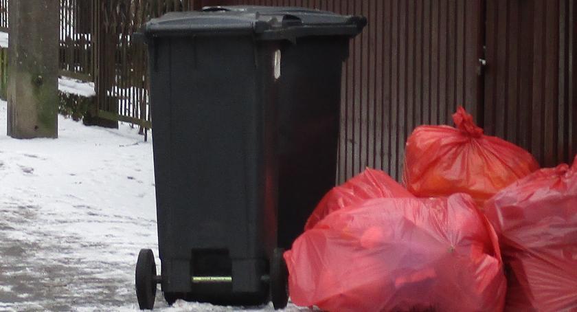 Eko System , Stawki śmieci górę - zdjęcie, fotografia