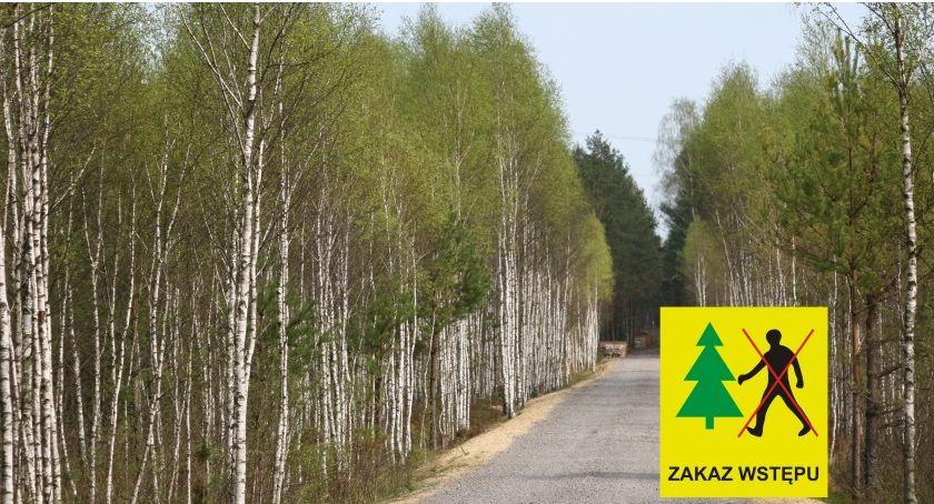 Eko System , Opryski lasów Nadleśnictwa Celestynów będą zakazy wstępu - zdjęcie, fotografia