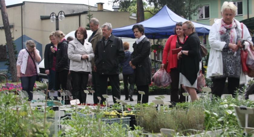 Parki i ogrody, Józefowski kiermasz ogrodniczy - zdjęcie, fotografia
