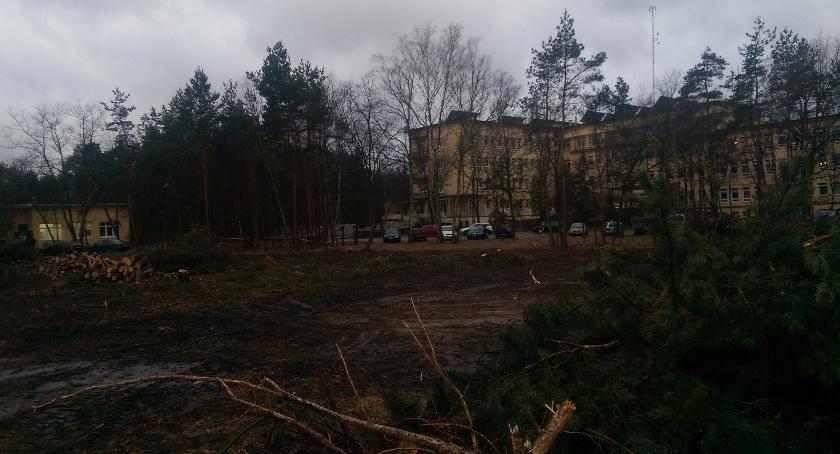 Ekologia, Łyso Batorego - zdjęcie, fotografia