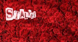 Otwock: 3 lata za 100 róż?