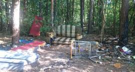 Recepta na góry śmieci w otwockich lasach