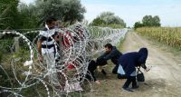 Uchodźcy i imigranci w powiecie otwockim – czy to możliwe?