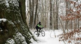Zimowe uroki nad Mienią
