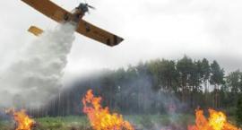 Samolot gasił pożary w okolicach Otwocka i Józefowa