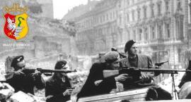 Obchody 74. rocznicy wybuchu Powstania Warszawskiego w powiecie otwockim