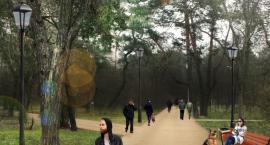 Ruszają prace w parku  – na początek woda i elektryczność