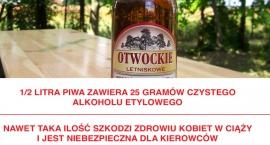 Nadchodzi Piwo Regionalne