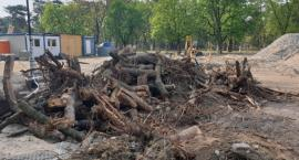 Postępy prac w parku miejskim - relacja radnego
