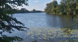 Jezioro Rokola bez motorówek