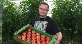 Jak VegaPol stał się liderem produkcji pomidora