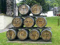 Whisky - Highlands, Speyside, Islay i Lowlands, czyli skąd pochodzi złoto Szkocji