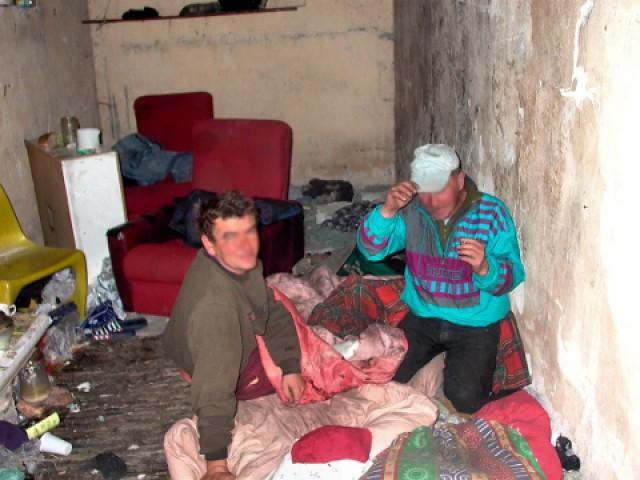 Informacje o Grodzisku, Pomagajmy bezdomnym - zdjęcie, fotografia