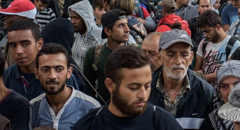 Samorząd, Uchodźcy Podkowie Leśnej ciąg dalszy - zdjęcie, fotografia