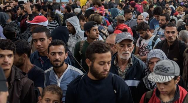 Informacje o Grodzisku, Uchodźcy Grodzisku - zdjęcie, fotografia