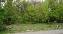 Gmina zadba o spółdzielcze trawniki