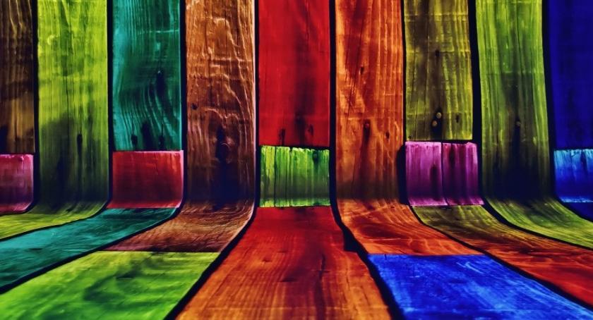 BLOGI, kolory - zdjęcie, fotografia