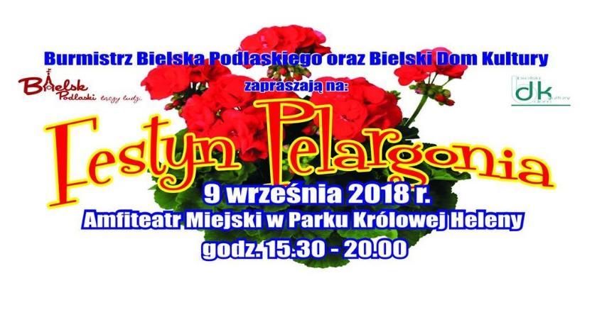 WYDARZENIA, Festyn Pelargonia - zdjęcie, fotografia