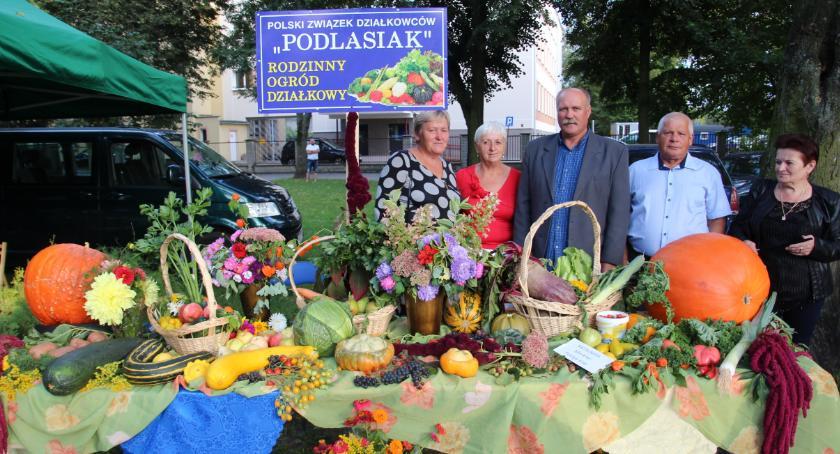 WYSTAWY, Bielsk Podlaski Festyn Pelargonia - zdjęcie, fotografia