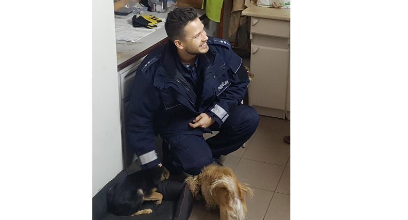 INTERWENCJE, Bielscy policjanci uratowali szczeniaka - zdjęcie, fotografia