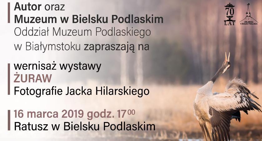 WYSTAWY, Wystawa fotograficzna Jacka Hilarskiego - zdjęcie, fotografia