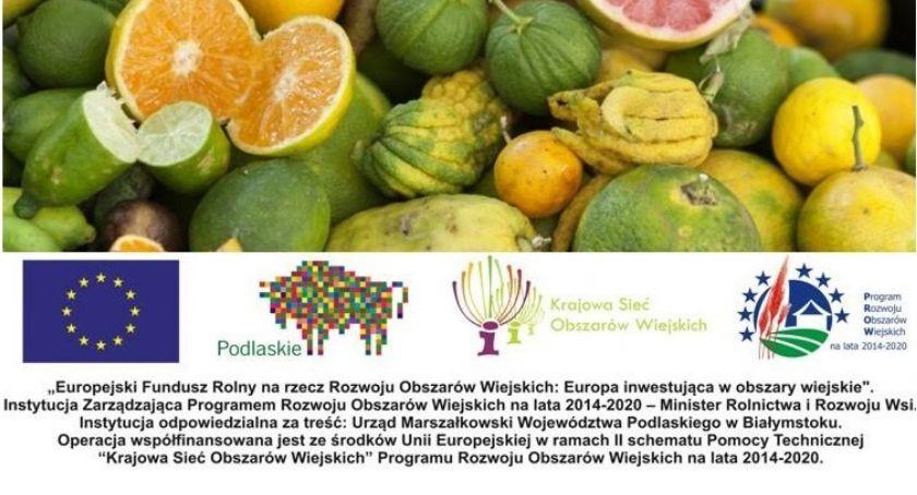 ROLNICTWO, Współpraca rolnictwie włoskie inspiracje - zdjęcie, fotografia