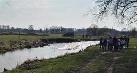 Z rzeki Nurzec wyłowiono ciało mężczyzny