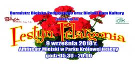Festyn Pelargonia 2018