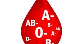 Akcja krwiodawstwa w Korchowie