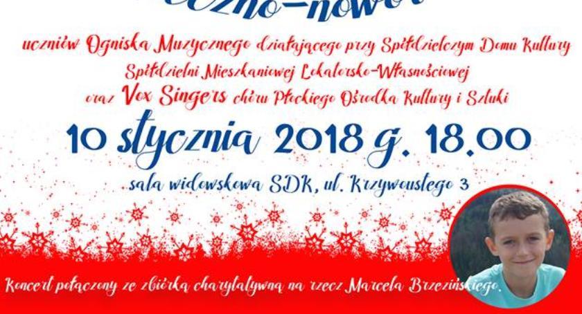 DOMY KULTURY, Koncert Marcela Brzezińskiego - zdjęcie, fotografia