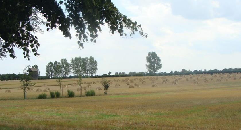 SPOŁECZNE, Rolnictwo Mazowszu - zdjęcie, fotografia