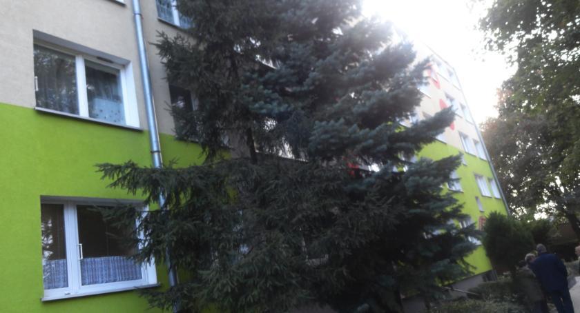 WIADOMOŚCI, Mieszkańcy Chopina wiceprezydentem Płocka - zdjęcie, fotografia