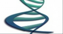 Profil genetyczny