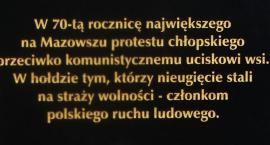 W rocznicę wiecu chłopskiego - protest rolników