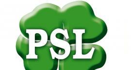 Wybory samorządowe - PSL przedstawił kandydatów w gminach powiatu plockiego