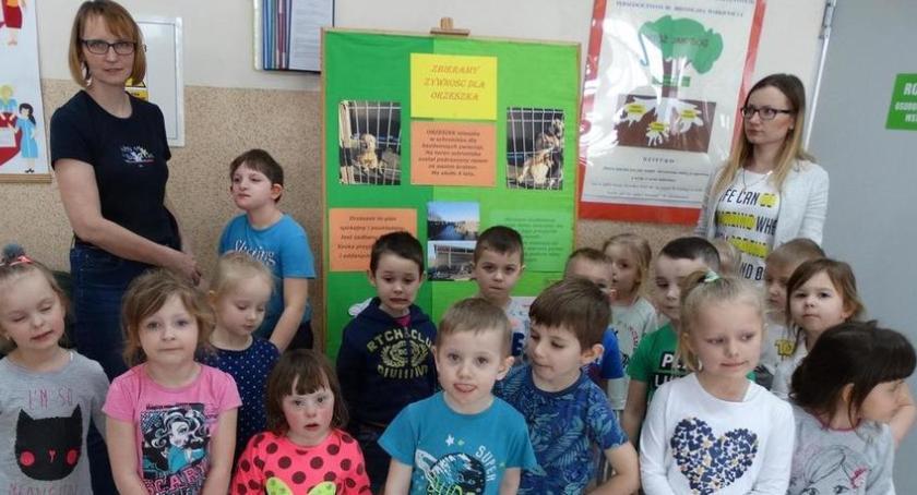 Aktualności, Chcą pomagać Orzeszkowi - zdjęcie, fotografia