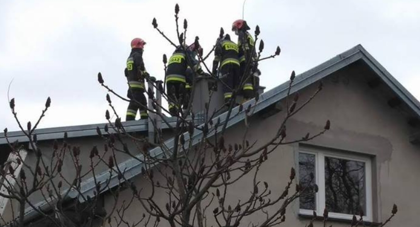 Pożary, Strażacy gasili pożar Regiminie - zdjęcie, fotografia