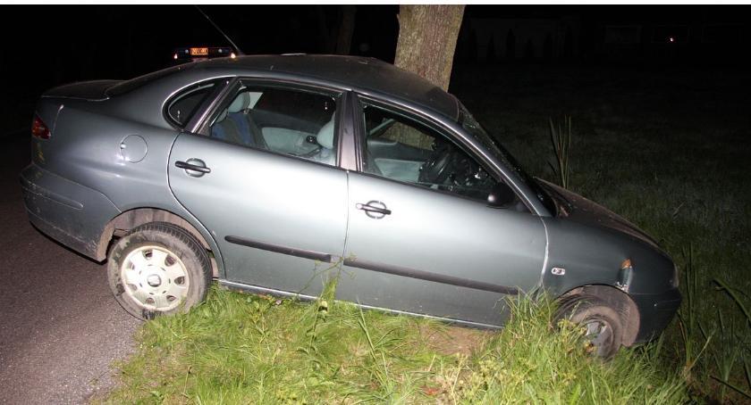 Wypadki drogowe, Nastolatka uderzyła Seatem drzewo Chciała ominąć - zdjęcie, fotografia