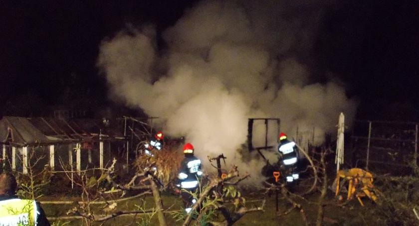Pożary, Pożar terenie ogrodów działkowych Ciechanowie - zdjęcie, fotografia