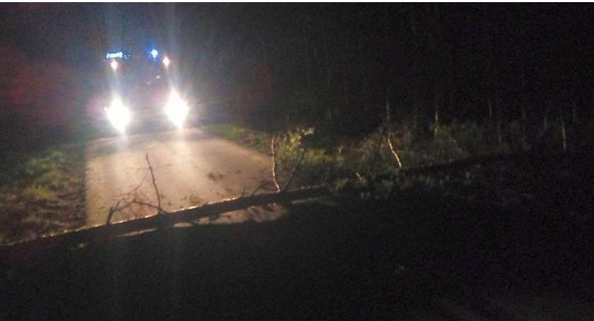 Pozostałe Interwencje, Powiało ciechanowskim Powalone drzewa blokowały drogi - zdjęcie, fotografia