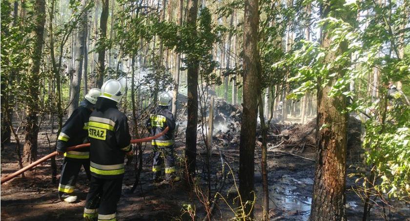 Pożary, pożary lasów powiecie ciechanowskim - zdjęcie, fotografia