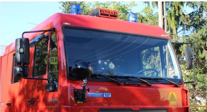 Pozostałe Interwencje, Siedział drzewie przez kilka Uratowali strażacy - zdjęcie, fotografia