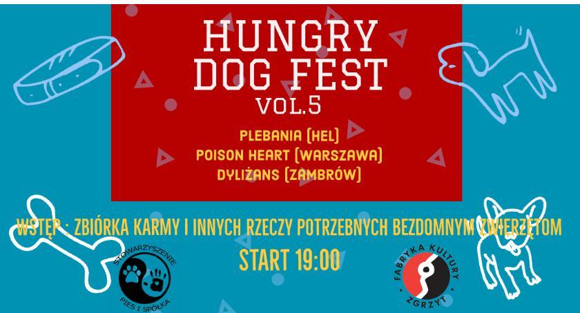 Koncerty, Wesprą bezdomne zwierzęta Hungry piąty Ciechanowie - zdjęcie, fotografia
