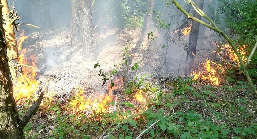 Pożary, pożary samym miejscu [zdjęcia] - zdjęcie, fotografia