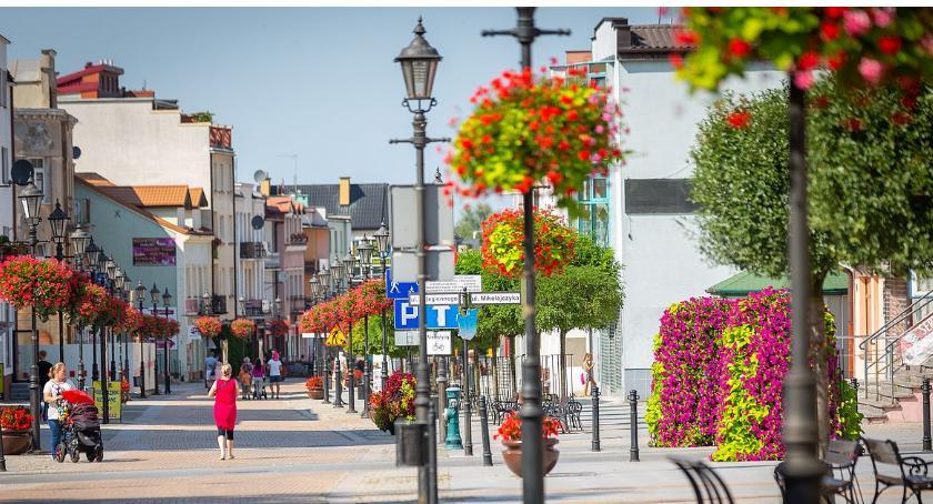 Społeczeństwo, Ciechanów najpiękniej ukwieconym miastem Polsce Oddaj swój głos! - zdjęcie, fotografia