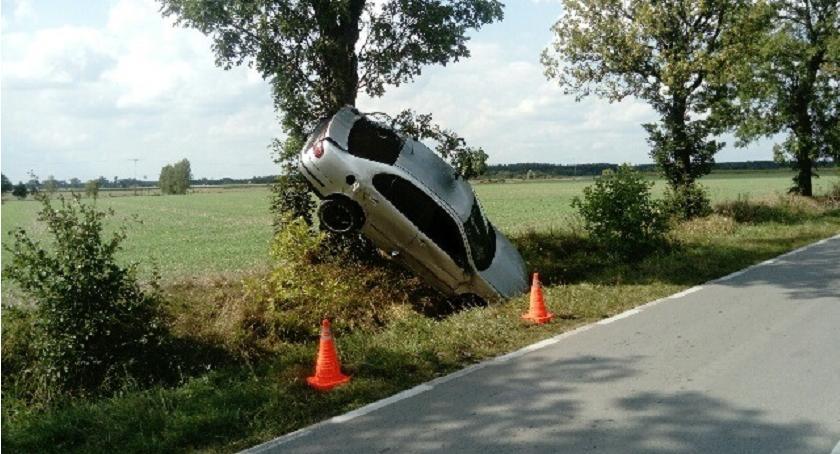 Wypadki drogowe, zatrzymał drzewie Podczas wyprzedzania uderzył [zdjęcia] - zdjęcie, fotografia