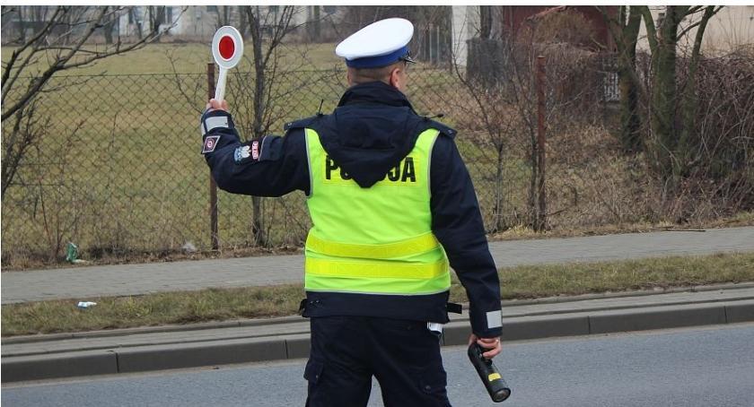Piraci Drogowi, latek szalał drogach ciechanowskiego Uzbierał punktów - zdjęcie, fotografia