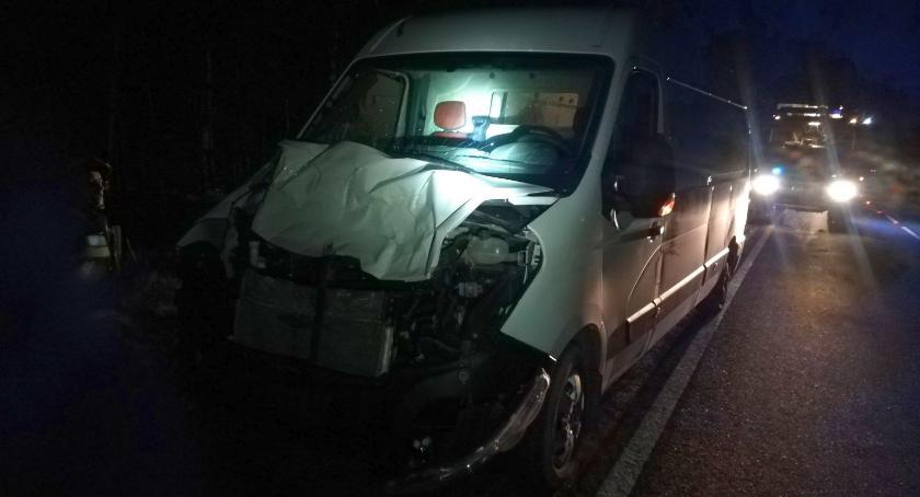 Wypadki drogowe, Renault uderzyło łosia Glinojeckiem [zdjęcia] - zdjęcie, fotografia