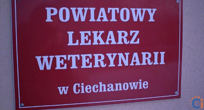 Komunikaty, Ciechanowie odbędzie bezpłatne szkolenie hodowców - zdjęcie, fotografia
