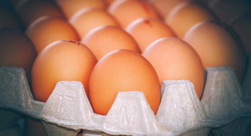 Zdrowie i Uroda, Uwaga! Pałeczki salmonelli jajkach popularnego marketu - zdjęcie, fotografia